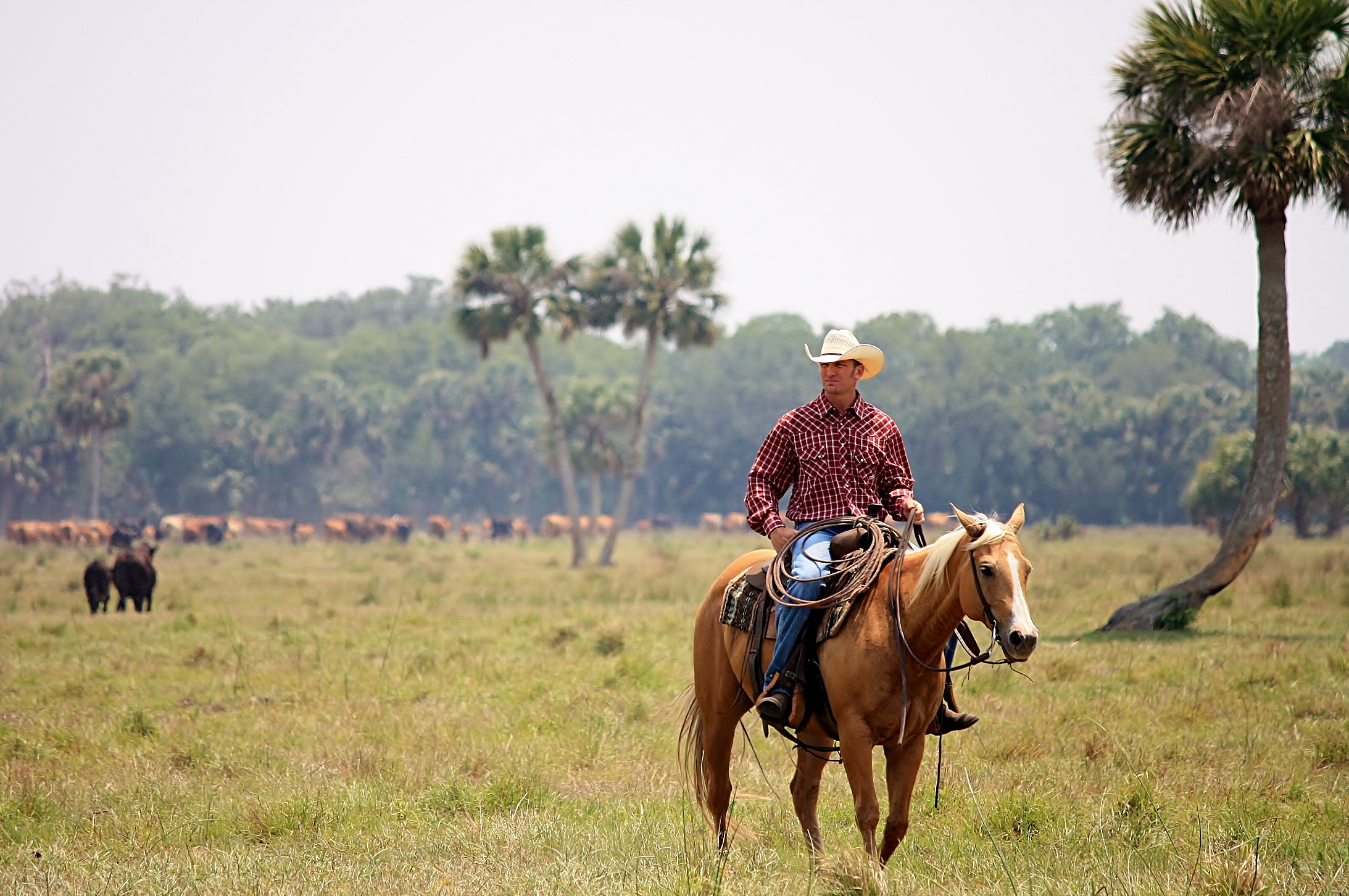 deseret ranches of florida home